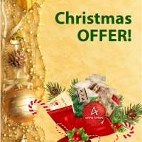 Fantastic Christmas OFFER!